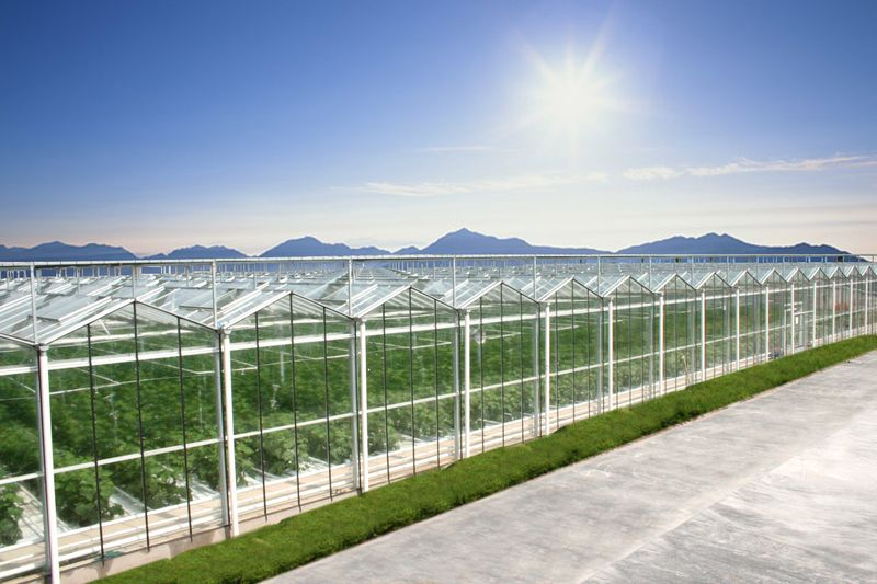Intelligent Greenhouse Solution